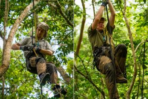 Saving Infinity - Up in the trees in climbing gear amongst the monkeys
