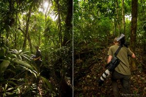 Saving Infinity - Crew carrying filming gear whilst tracking down monkeys
